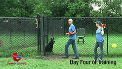 Controlling Dog Aggression-Final-V2