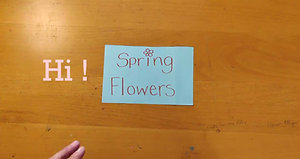 Spring flowers project