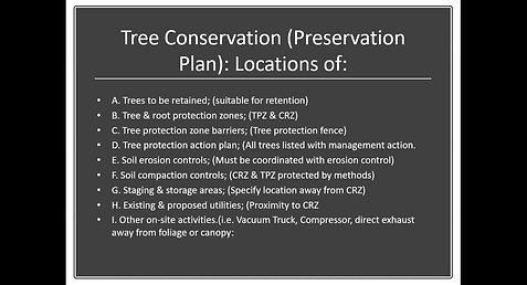 Best Practices for Managing Trees During Design & Construction