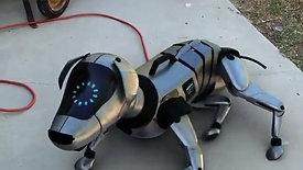 Robo_dog