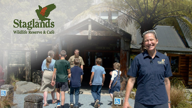 Staglands | Guided Tour
