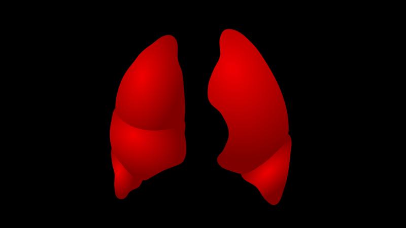 Página de vendas_Sistema Respiratório
