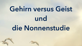 D3-Die Nonnenstudie