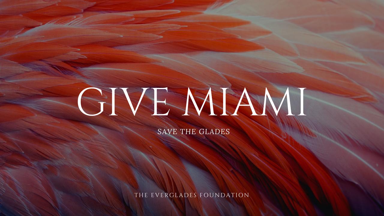 Give Miami