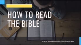 8. So ... what is the Bible?