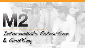 M2 - Mentoring 2 Intermediate Extraction & Grafting
