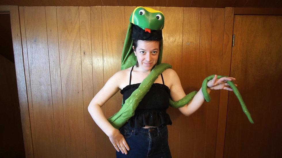 Serpent Demonstration