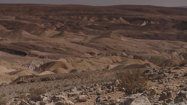 A Wine-Oasis in the Israeli Negev Friendly Desert