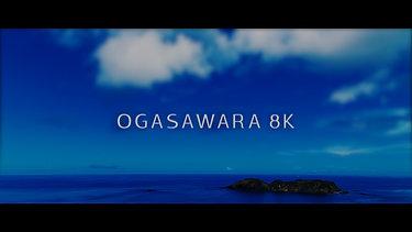 OGASAWARA 8K | Timelapse Hyperlapse Film