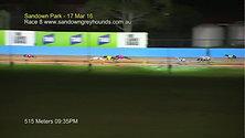 Sandown Park Track Record - 28.95