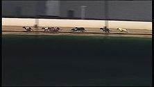 Warrnambool Track Record - 24.72