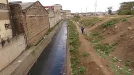 THE RIPARIAN DILEMMA   The truth behind Nairobi's riparian encroachment