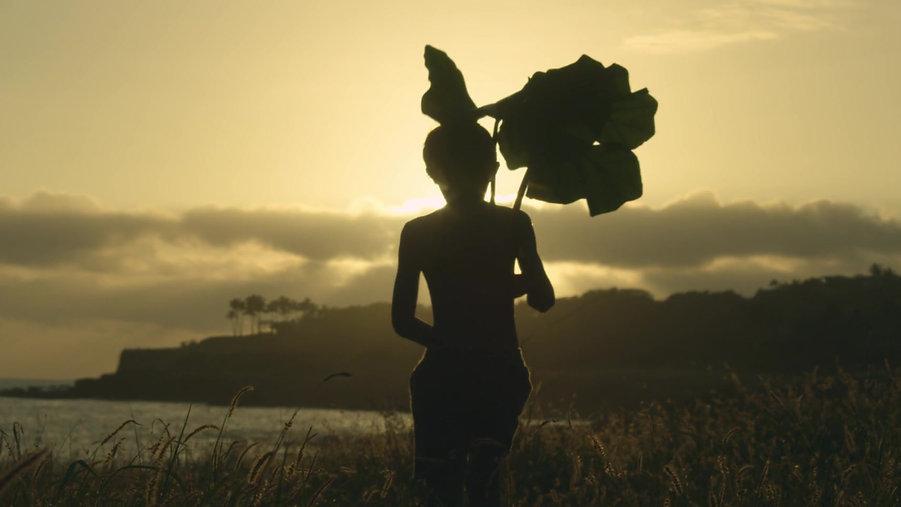 Lanai Teaser - Four Seasons