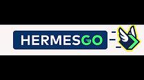 HERMES GO ANIMATED