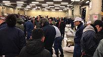 TsukijiAuctionRoom02