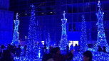 Holiday Lights - Caretta Shiodome