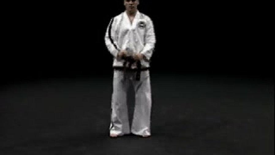 ITF Taekwondo Patterns