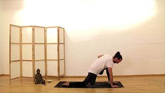 Yoga Therapy - Unterer Rücken