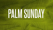 Palm Sunday: Jesus is King