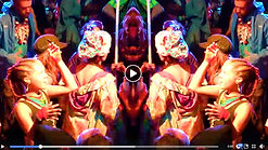 Reid Speed - Shambhala 2019 Recap Video