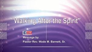 Walking After the Spirit