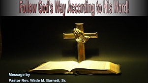 Follow God's Way According to His Word