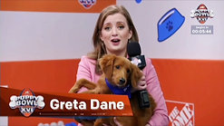 Puppy Bowl clips