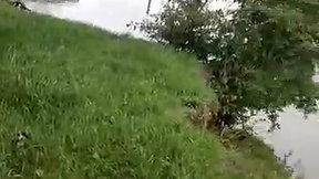 Video 04-09-2020, 11 57 54