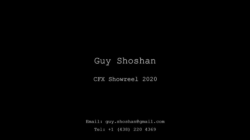 Guy Shoshan - CFX Showreel 2020