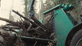 Holz, eine Alternative zur fossilen Wärmegewinnung.
