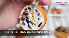 DIY : boules des graines