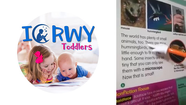 ICRWY Toddlers