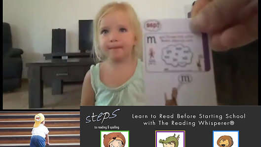 Miss Emma's 'Steps to Reading and Spelling' Focus