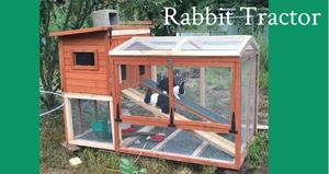 Rabbit Tractor 2018