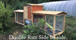 Large 2 Hole Run Rabbit Hutch 2018
