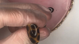 Simple Tortoise Shell Nail School