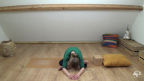 Yin Yoga for Stress Relief - Live Session 23 March