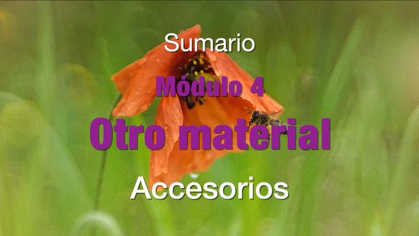 SUMARIO Modulo 4 Otros accesorios (GRATIS)