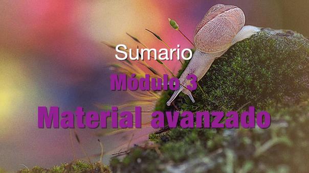 SUMARIO Modulo 3. Material avanzado (GRATIS)