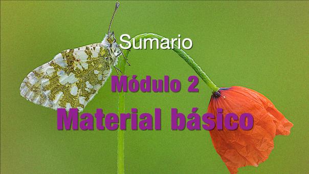 SUMARIO Modulo 2 Material básico