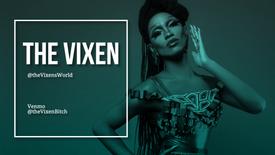 The Vixen - Chicago Artist Profiles