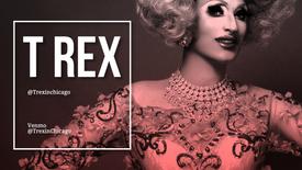 T Rex - Chicago Artist Profiles