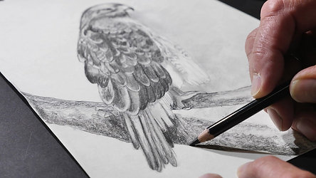 Cream Drawing Paper