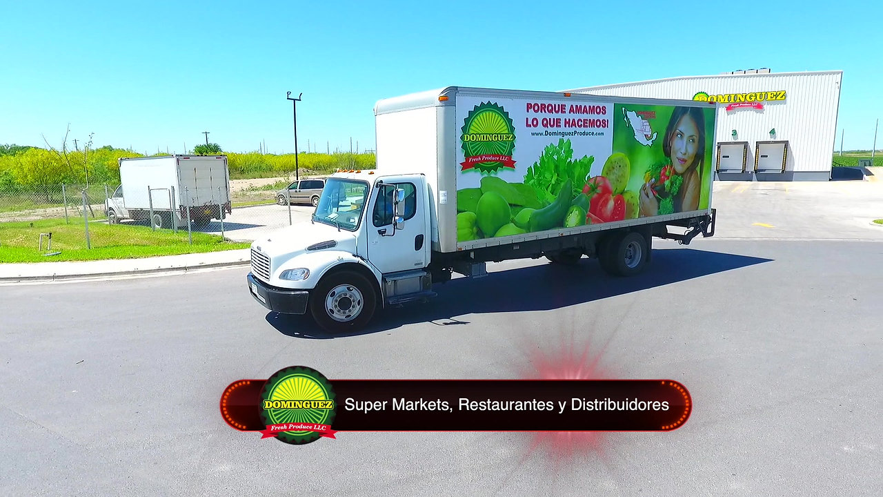 Dominguez Corporate Video 2019 (Spanish Version)