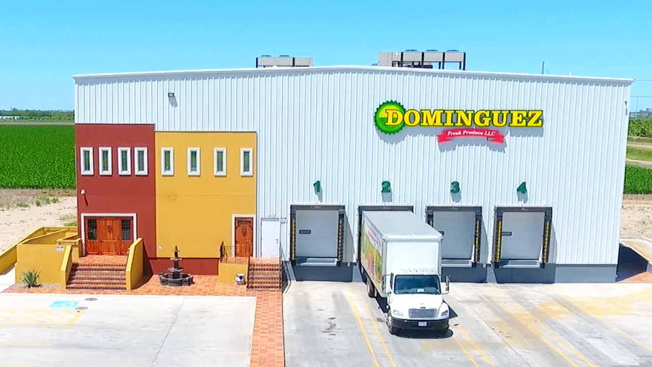 Dominguez Corporate Video (English Version)