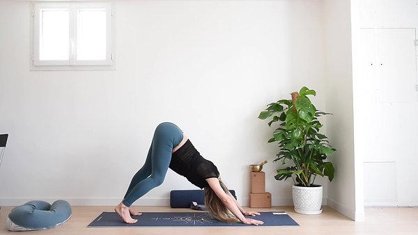 Yoga Pré Natal 7 - CIRCULATION SANGUINE