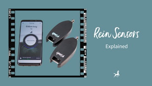 Rein Sensors explained