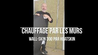 Wall-Skin
