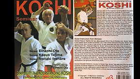 Shorin-Ryu Karate: Koshi