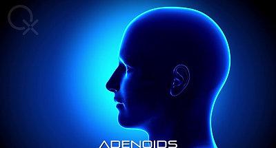 Proquantique - Adenoids